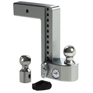 "Weigh Safe WS10-2.5 Adjustable Ball Mount with 10"" Drop and 2.5"" Shank"