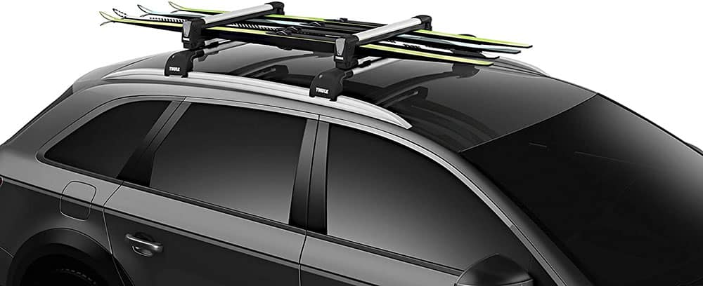 Thule SnowPack Roofs